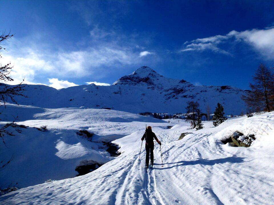 Pizzo Scalino (3323 m) dall'Alpe Campagneda